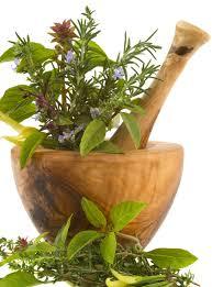 zioła dla alergików