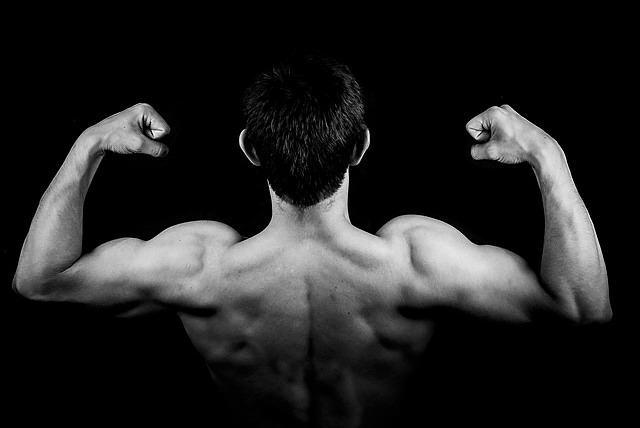 trening siłowy, suplementy dla sportowców, czy trening siłowy skraca mięśnie, domsy