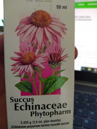 krople echinacea